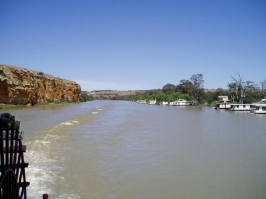 Murray River_9
